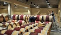 Filling Wine Barrels at Mondavi