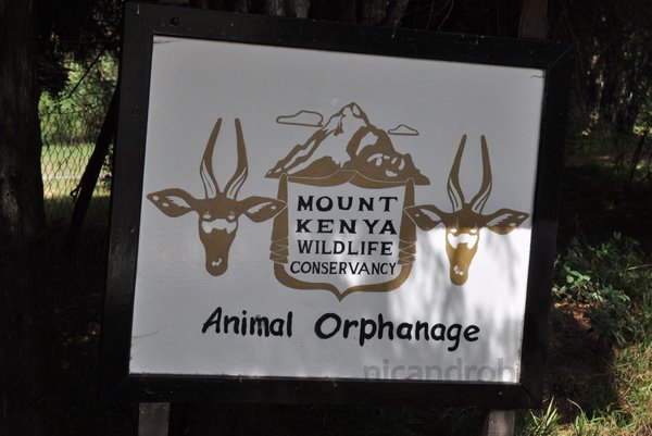 Mount Kenya Animal Orphanage