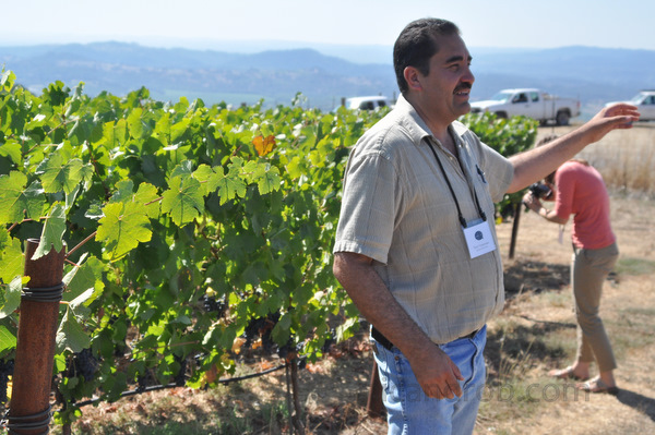 Vineyard Manager Tony