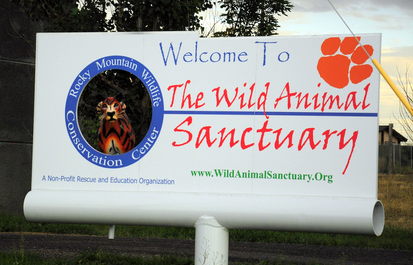 Welcome to the Sanctuary