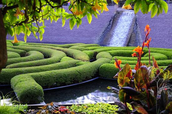 Love that 'maze'