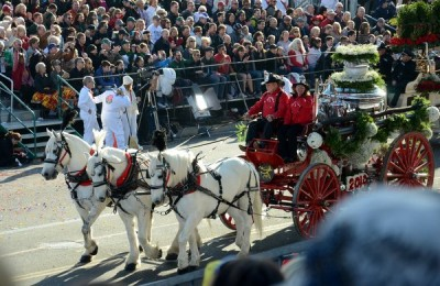 A trio of horses pulled a vintage fire engine